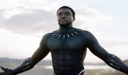 Will There Be Black Panther Season 2